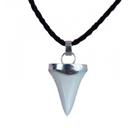 24-29 mm great white shark tooth sterling silver Cap necklace Upper or Lower
