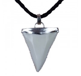 39-44 mm upper great white shark tooth sterling silver Cap necklace