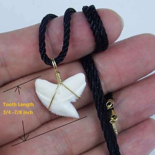 Real tiger tooth necklace